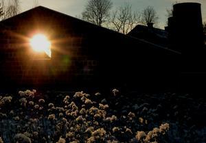 Solnedgång vid hyttruinen i Högfors, Norberg