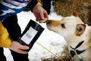 En kontakt i Alaska som Claes Arvidsson träffade på Facebook skickade hemmagjort hundgodis.