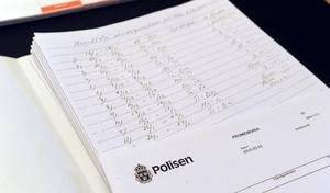 Bollnäspolisen har summerat ihop en lång rad av anmälningar av skadegörelse i Lokstallsområdet.