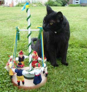 Katten Lakrits undrar vad som pågår.Varför finns det inga katter med i dansen?Men Lakrits önskar alla en trevlig midsommar