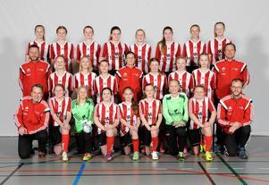 Team Hudiks F13-lag vann Medelpadsserien division 3a. Nu väntar tufft motstånd i Gothia cup.