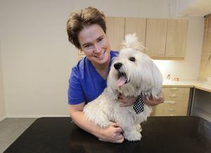 – De finns de som lämnar hunden själv för att de är bortbjuden och det är helt oacceptabelt, tycker veterinären Maria Karlsson här med hunden Messi, 1,5 år, som är en Bichon havanais.