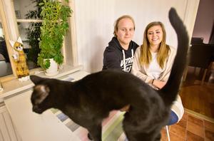 Katten Nisse vill gärna vara med på bordet när Agnes och Mattias ska fotograferas.