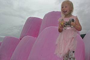 Tuva Lisa Näsholm i Undrom gillar rosa och tycker att det är jättebra att mamma och pappa har skaffat rosa plast till höet.