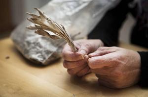 Ett knippe med salvia används när man vill röka bort vålnader från hemsökta hus.