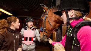 Valentina Smeds, Alicia Carlsgren och Linn Sundqvist i Rocklundas stall med hästen Dennis.