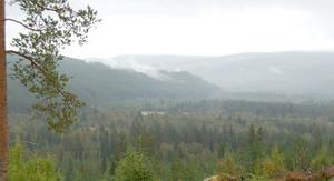 Ett berg som skydd, sjöläge, sandmark där två vettandrag går i hop, gott om älg och fisk och lätta att fånga dem. Allt stämde för de första älvdalingarna som hittade en perfekt plats i Finnhed. Finntjärn skymtar nedanför berget där ungskogen är lite mer ljusgrön.