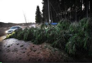 I Grängshammar drogs en stolpledning ner och blockerade samtidigt en stor del av körbanan.Foto: Staffan Björklund