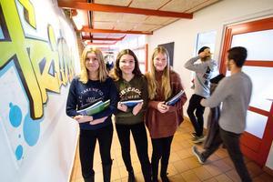 Tuva Svensson, Annie Holst och Amelie Friman går på Risbroskolan. Ingen av dem har någonsin varit orolig på skolan.
