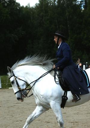 Kungens häst. Annelie Bergdahl rider på den vita springaren Dardo. Foto:Staffan Alberts