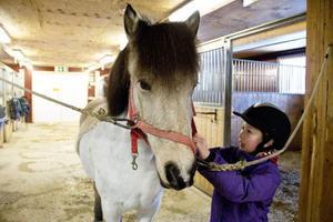 Elice Sundström har ridit i fem år. Hästintresset har hon fått från mamma Malin Sundström. Hennes kamrat i stallet i Ås är valacken Isak.