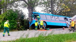 Busschauffören frontalkrockade med ett träd efter att ha druckit 1,5 deciliter whisky.