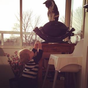 Vår son Charlie står och pratar med sin katt Ellis och försöker ta sig upp till hennes nivå.