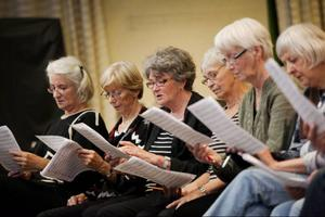 Många har sjungit i kör förut, för andra är det första gången. Den nybildade kören för dem över 65+ lockar både och.