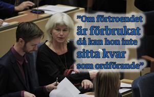 Karin Svensson Smith (MP) ordförande för riksdagens trafikutskott.