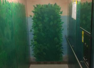 Hissen som bostadsrättsföreningen Asea-stan anser är Sveriges värsta. Bilden är beskuren.