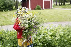 Bakom ett berg av blommor gömmer sig sexåriga Sunniva som hälsar på farmor och farfar Barbro och Örjan Lundqvist.