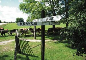 Åkerby vägskäl i Skruv, där de som skulle utvandra till Nordamerika samlades för fortsatt färd söderut mot havet och båtfärden.