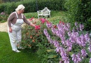Christines trädgård innehåller blend mycket annat 25 slags pioner och 50 slags rosor, – Rosor doftar så gott.