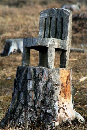En stol utsågad direkt ur stubben märkt av vädret. I fårhagen finns ytterligare minst två stolar utsågade på samma sätt av någon som är duktig på att hantera motorsågen.