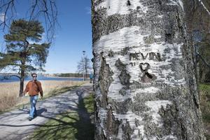 Kevins namn inristat i en björkstam i närheten av platsen där man hittade den fyraårige pojken.