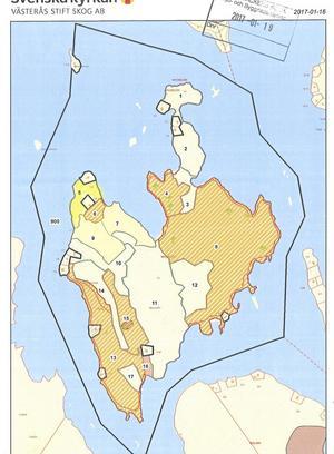 Kartbild över Västerås stifts planerade avverkning på Nyckelön i Norra Barken, Smedjebacken. De streckade fälten är där avverkningen kan komma att ske.