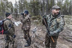 Lars Karsson går med sin hund i skogen medan Johan och Anders jagar.