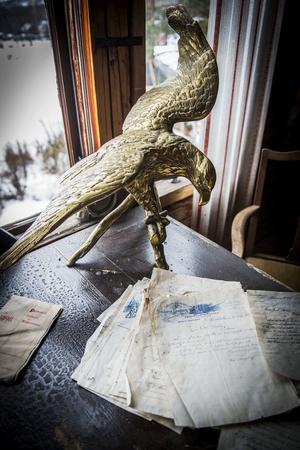 Fågeln köpte paret under en weekendresa i Amsterdam.