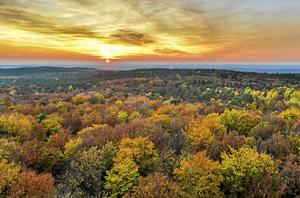 This Sunday, Nov. 1, 2015 photo shows an autumnally colored birch forest from a viewing platform as the sun sets at the Rauen Hills in Rauen, eastern Germany. (Patrick Pleul/dpa via AP)