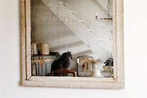 Fransk. Spegeln  är från slutet av 1700-talet och har tvådelat glas med kvicksilver mellan. Magnus har köpt den av en handlare i Malmö.