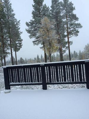 Snön föll även över Lofsdalen under onsdagen. Bilden är inskickad av Victor Ericsson.
