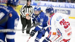 Tom Hedberg var med i Örnsköldsvik och firade Leksands SHL-plats för drygt ett år sedan. Nu återvänder han till Sverige och ryktas till andra klubbar – men han har kontrakt med LIF ett år till.