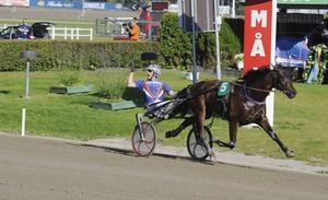 Ochongo Face, här i ett tidigare V75-lopp i Gävle, vann återigen.