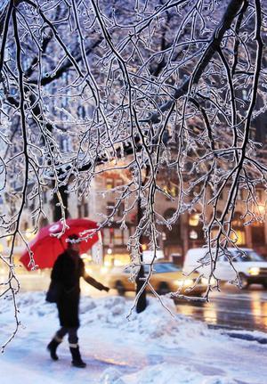 Lyser med sin frånvaro. Ännu har ingen snö fallit över Mälardalen.foto: scanpix