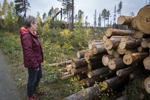 Gunilla Rodhe jobbade på förskola i Svenstavik och tog ofta både sina egna barn och förskolans på utflykt till ekoparken. Nu är all skog borta i ett område som skulle sparas.