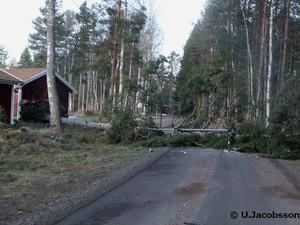 En bild från Gullgravsvägen på Sollerön.