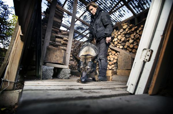 Polisinspektör Charlotte Glatter med BPU-hunden Ilya.