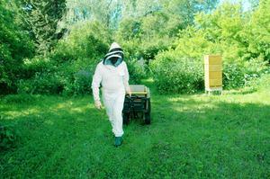 """När drottningen har tillräckligt med bin för att börja bygga upp samhället igen stänger KG lådan, låter bina lugna ner sig en aning och flyttar sedan kupan till en ny plats för att därefter sälja samhället vidare. """"Minst fyra kilometer måste kupan flyttas så att bina inte flyger tillbaka till den gamla kupan"""", säger biodlaren KG Jirdén."""