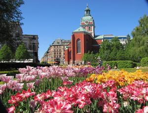 Så här vackert var det i Kungsträdgården fredagen den 25 maj. Stockholm är en fantastisk sommarstad.