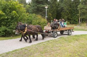 Det erbjöds även gratis åkturer med häst och vagn.