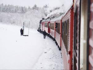 Ångloket hade fem vagnar för passagerare.