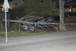 Vansinnesfärden slutade med att mannen körde in i ett träd i ett villaområde i Kumla.