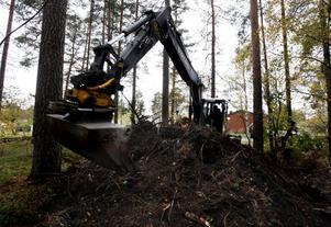 Skräp som hör hemma hos Gästrike Återvinnare, inte i skogen nära bostadsområdet i Höjersdal. 34 000 kronor kostar enbart upptagningen av denna hög Gävles skattebetalare.
