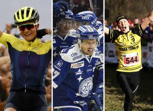 Jenny Rissveds, Leksands IF och Tove Alexandersson är alla bidragande orsaker till att Falun, Leksand och Borlänge är med i kampen om Sveriges bästa idrottsstad.