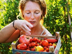 I Grönt! Odla egna grönsaker ger trädgårdsmästaren Karin Eliasson tips om hur odlaren bäst lyckas med olika frukter och grönsaker.