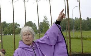 """""""BOPLATS"""". Ulla Viotti skapar konst som går att uppleva inifrån."""