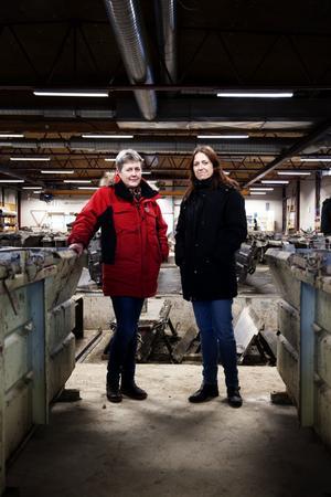 Tung industri med omfattande tillverkning. Delägarna Karin Englund och Anna Mårten har arbetat inom betongföretaget Gunnar Prefab sedan 1994-95.
