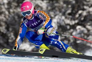 Nike Bent petas ur  det alpina landslaget  efter tre säsonger.
