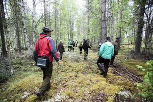 Ut på jakt i skogen efter fornlämningar.