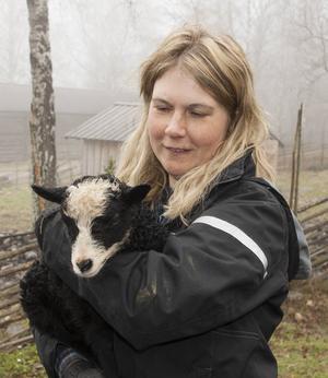 Berget har fått nya djur i form av små nyfödda lamm.